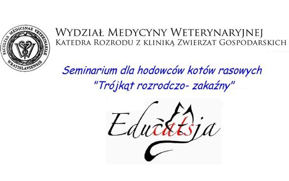 WYSTAWA11