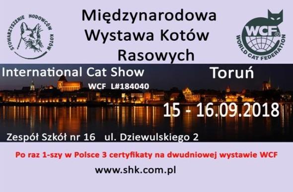 WYSTAWA12