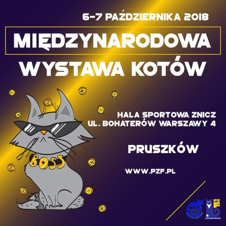 WYSTAWA15