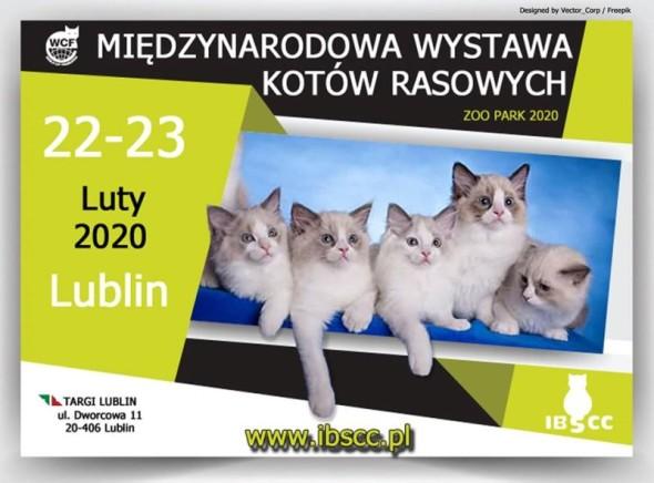 WYSTAWA17