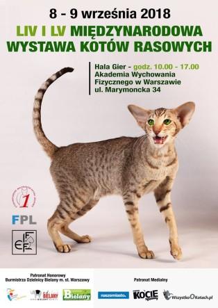 WYSTAWA1