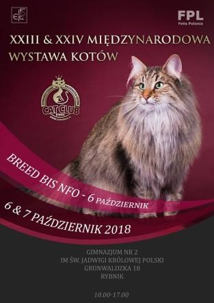 WYSTAWA18