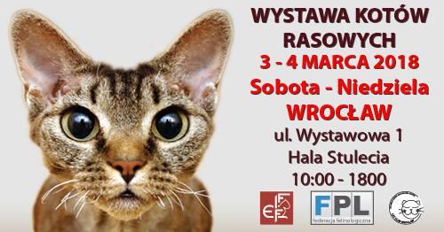 WYSTAWA5
