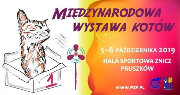 WYSTAWA6