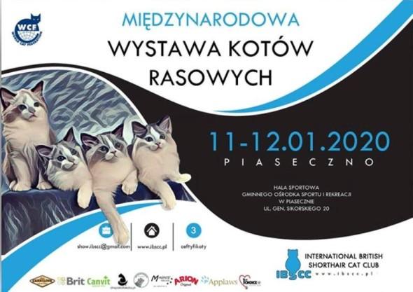 WYSTAWA7