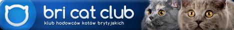 bricatclub.pl