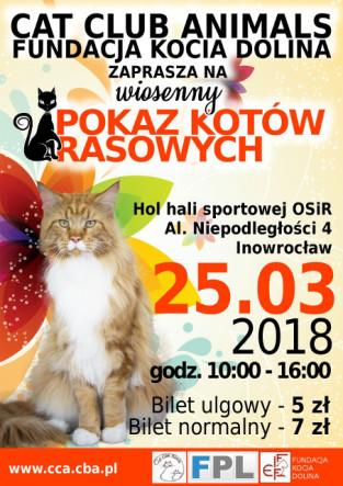pokaz_inowroclaw_2018_pomniejszony